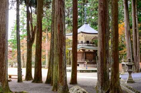 Compexe de temples de Danjo Garan, Koya San - Japon -