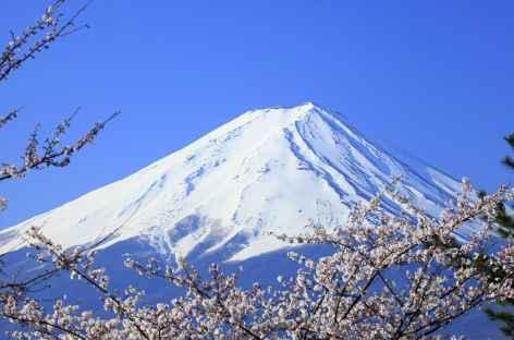 Le Mont Fuji, à 3776 m d'altitude - Japon -