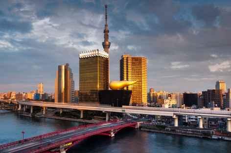 Vue sur Tokyo depuis la rivière Sumida - Japon -