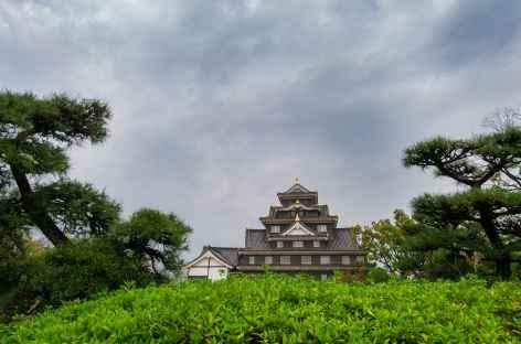Le château d'Okayama - Japon -