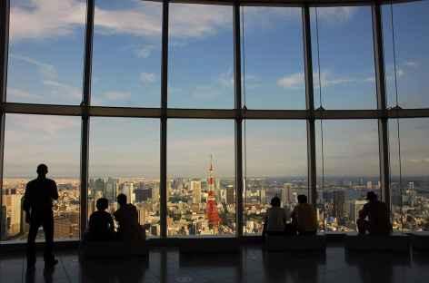 Vue sur la ville depuis Mori Tower, Tokyo - Japon -