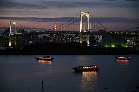 La baie de Tokyo de nuit - Japon -