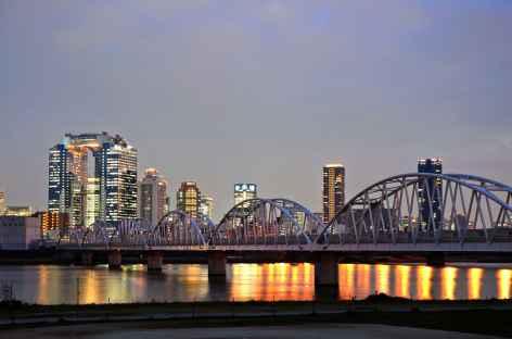 Osaka, vue sur le Umeda Sky Building - Japon -