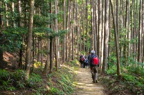 Sur les chemins de pèlerinage de Kumano Kodo - Japon -
