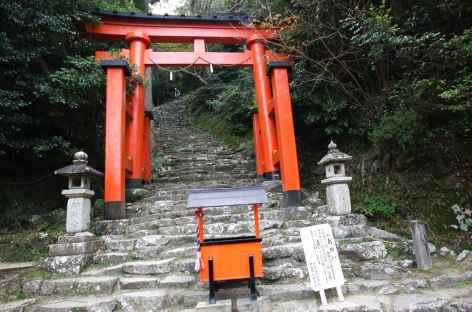 Au pied des escaliers menant au sanctuaire de Kamikura, Shingu - Japon -