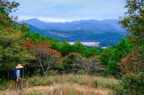 Sur les chemins sacrés de Kumano Kodo, avant Kumano Hongu Taisha - Japon -
