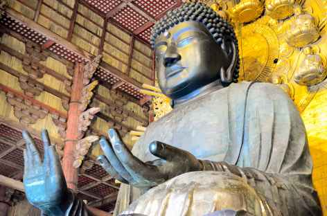 Daibutsu, grand bouddha de bronze de 16 m de haut, Nara - Japon -