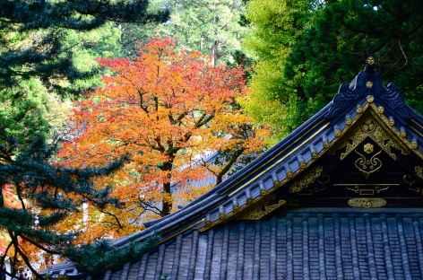 Sanctuaire de Taiyuin, Nikko - Japon -