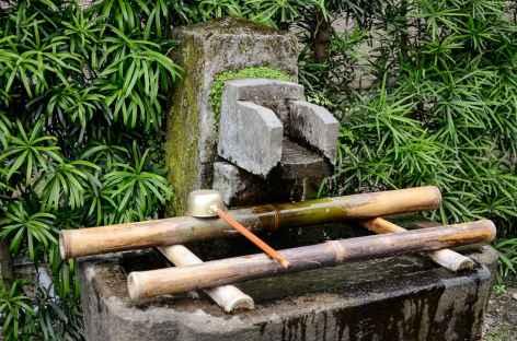 Dans le jardin de Sengan-en, Kagoshima - Japon -