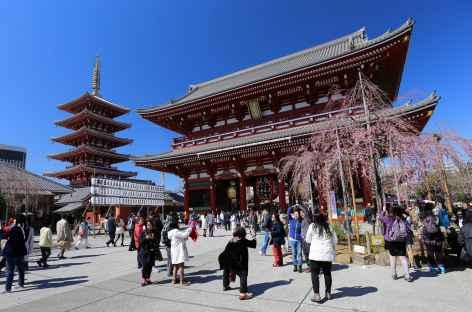 Temple bouddhiste de Senso-ji, Tokyo - Japon -