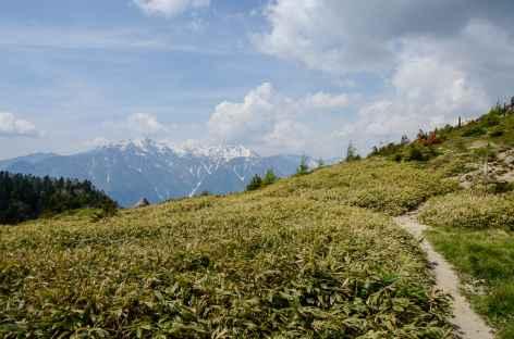 Randonnée menant au sommet du Yakedake (2455 m) - Japon -