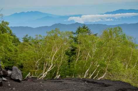 Randonnée en balcon face au Mont Fuji - Japon -