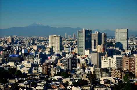 Ville au de Tokyo, au loin le mythique Fuji-san - Japon -