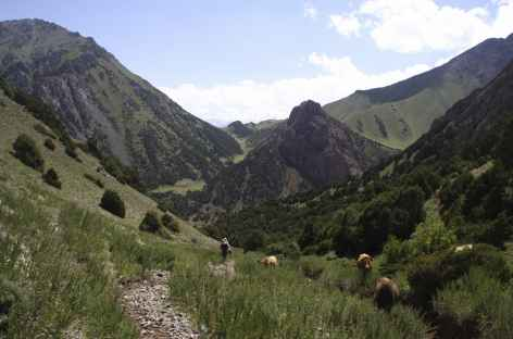 Canyons - Kirghizie -
