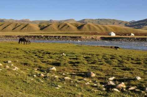Dans la plaine de Soussamir - Kirghizie -