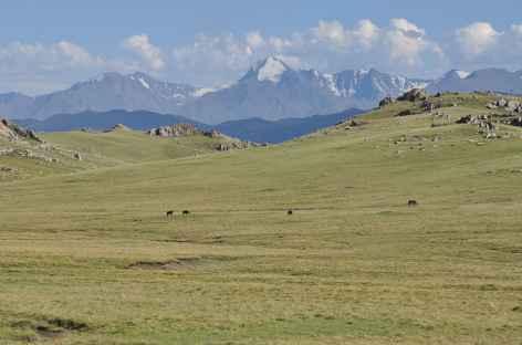 Plateau des Tian Shan - Kirghizie -