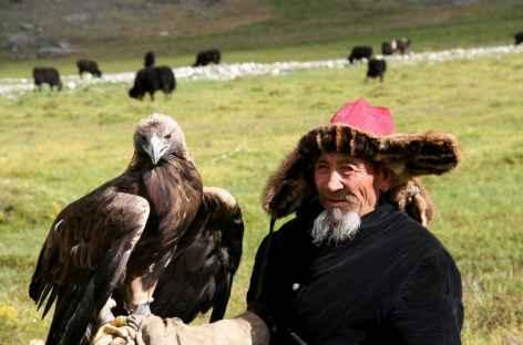 Fauconnier -