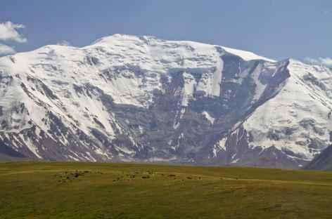Le Pic Lénine depuis le Pamir Alaï - Kirghizie -