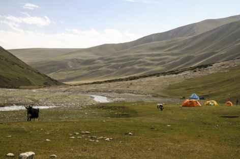 Camp en bas de la vallée de Sary Mogol - Kirghizie -