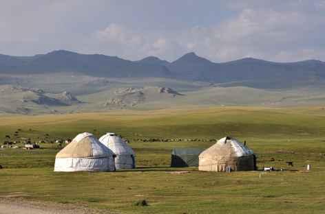 Camp de yourtes sur les rives du lac Song Kul - Kirghizstan  -