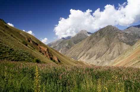 Vallée de Sary Mogol nord - Kirghizie -
