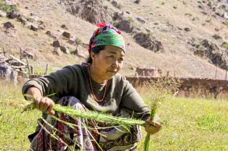 Préparation des cordages pour les foins - Kirghizie -