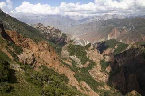 Vue sur les hauteurs de Oytal - Kirghizie -