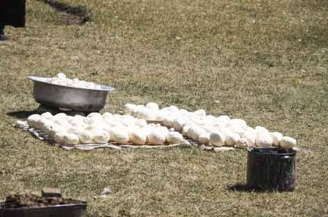 Fromages séchant au soleil - Kirghizie -