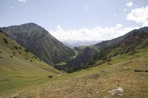 Depuis le col Kochmoinok - Kirghizie -