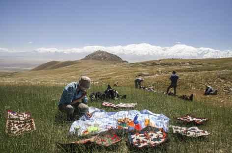 Pique-nique face au Pamir- Kirghizie -