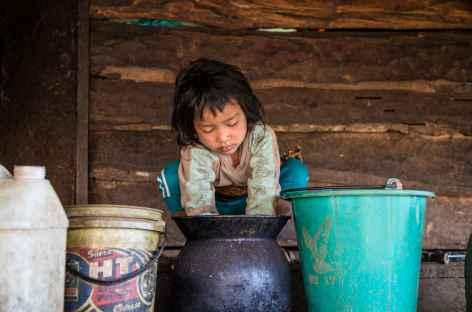 Plateau des Boloven - Laos -