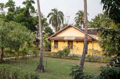 Sur l'île de Don Khone - Laos -