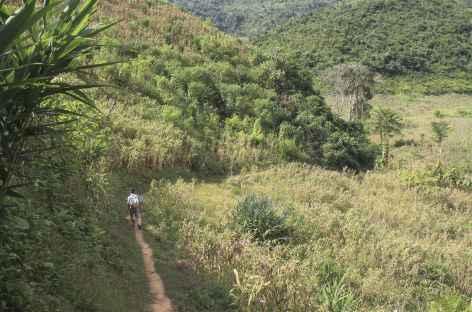 Marche à travers les champs après Payang - Laos -