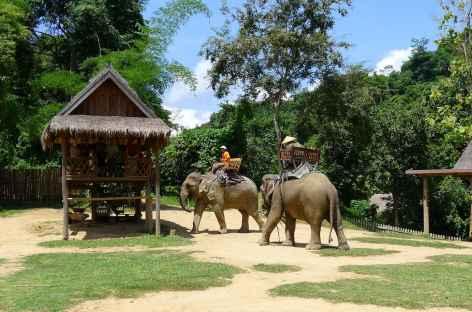 Balade à dos d'éléphants - Laos -