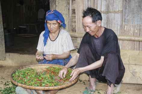Le tri des piments au village de Ban Vieng - Laos -