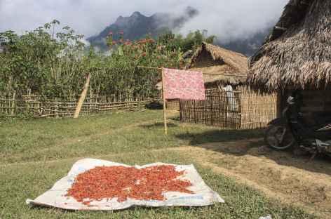 Arrivée au village Hmong de Payang - Laos -