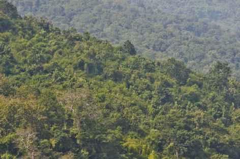 - Laos -