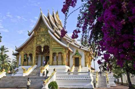Un temple dans l'ancien palais royal de Luang Prabang - Laos -