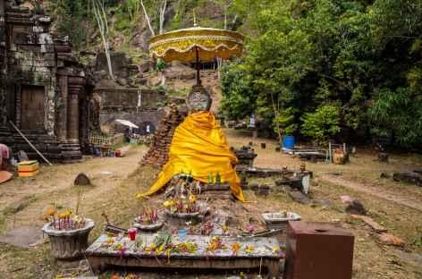 Le site du Vat Phu Champassak - Laos -