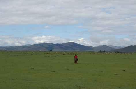 Vallée de l'Orkhon - Mongolie -
