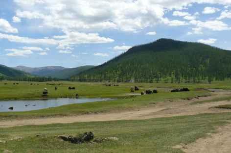 Région des Huit lacs, Mongolie -