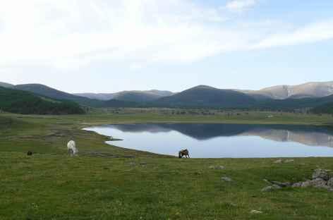 Région des Huit lacs - Mongolie -