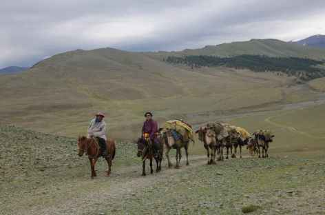 Chameliers - Mongolie -