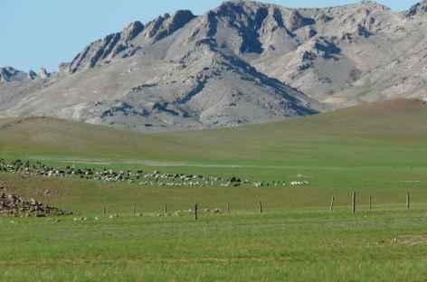Mörön - Mongolie -