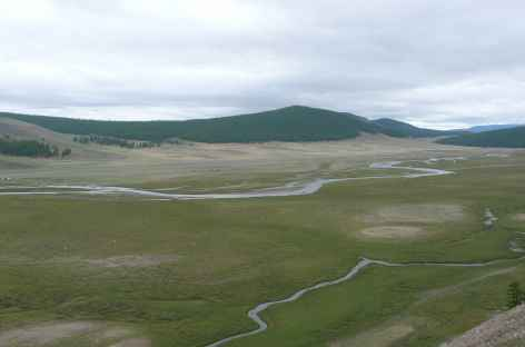 Marécages près de Mörön, Mongolie -