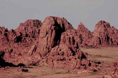 Bayanzag, Mongolie -