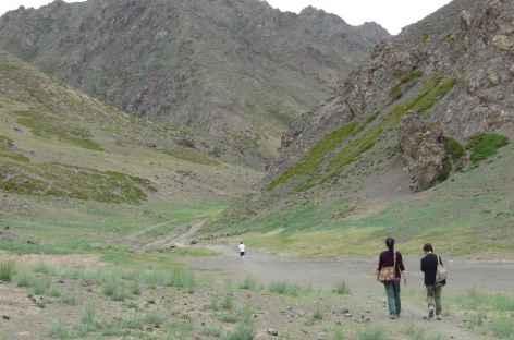 Vallée d'Yoliin Am, Mongolie -