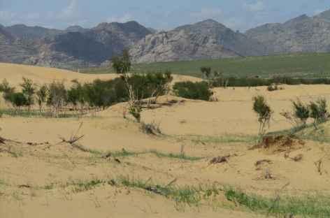 Dunes d'Elsen Tasarkhai, Mongolie -