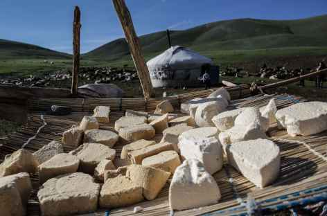 Fromage - Mongolie -