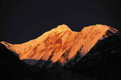 Nilgiri-Népal -